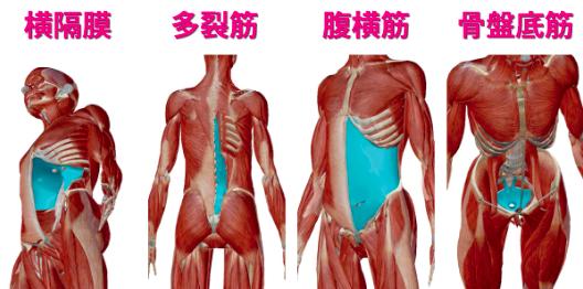 インナーマッスル 腰痛