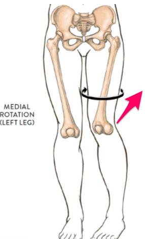 O脚と股関節内旋・膝過伸展
