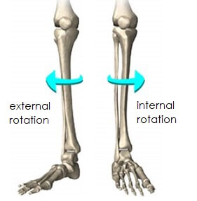 膝の回旋運動